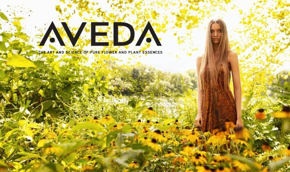 Why Choose Aveda?