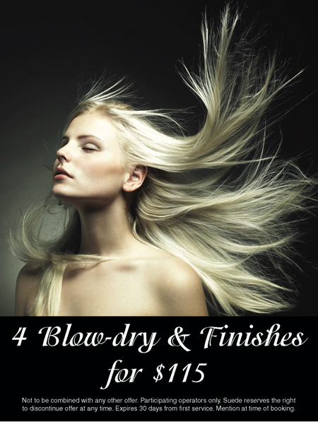 4 Blow Dry and Finishes for only $115